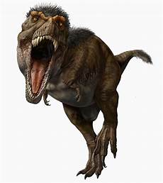 t rex had feathers and other surprising facts about the