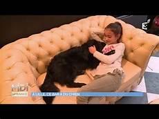 bar a chien lille le premier bar 224 chiens d europe est 224 lille