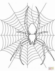 Window Color Malvorlagen Spinne Simple Spider Web Drawing At Getdrawings Free