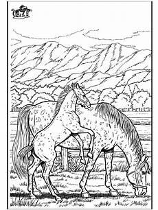 kleurplaat wilde paarden pferd 6 ausmalbilder pferde