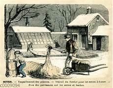 Gartenarbeit Im Winter Quagga Illustrations