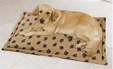 tapis chauffant chien exterieur tapis pour chien diff 233 rents types d accessoires 224 conna 238 tre