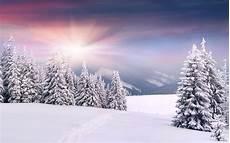Snow Picture