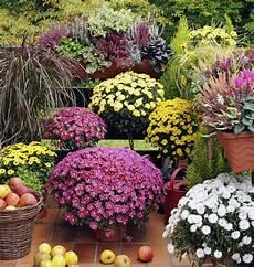 foto di giardini fioriti balconi fioriti e terrazzi fioriti come progettarli in