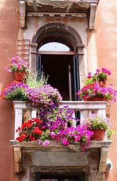 fioriere da davanzale venecia amazing world balconi fioriere per davanzale
