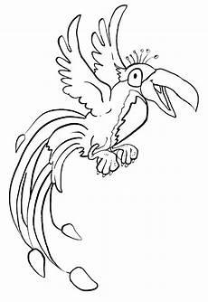 Ausmalbilder Tiere Papagei Papagei Ausmalbilder Tiere Ausmalbilder Ausmalen