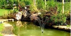 d ornement pour jardin installer un bassin d ornement au jardin
