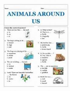 animals around us esl worksheet by rhae
