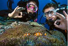 dive courses australia seven day scuba dive course real gap experience