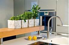 Frische Kräuter In Der Küche - genuss mit kr 228 utern frische ernte aus der k 252 che das