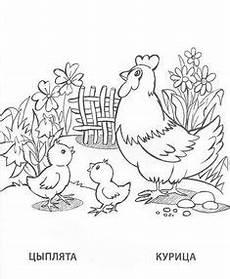 vogel malvorlagen lyrics ausmalbilder tieredeswaldes 19 gif 595 215 842 animal