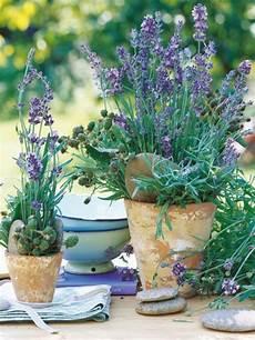 Lavendel Deko 34 Unglaubliche Ideen Archzine Net