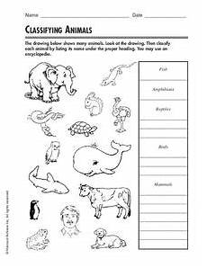animals and their worksheets 14100 classifying animals worksheet for 3rd 4th grade lesson planet