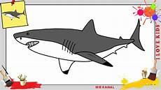 Malvorlage Hai Einfach Hai Malen Kinder