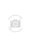 Вид на жительство в россии форма