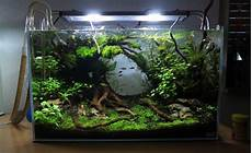 Http Www Aquascaping Forum De Board4 Aquascaping Board8