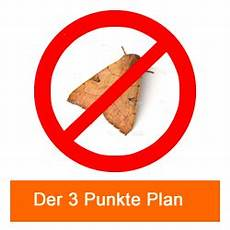 motten bekaempfen 3 punkte plan 2 was tun gegen motten