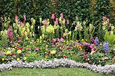 kleines blumenbeet gestalten perennial plants near norwich