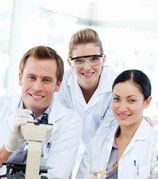 aufbau des pharmaziestudiums