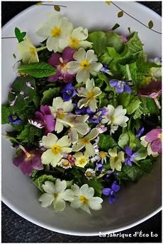 salade fleurs sauvages fleurs comestibles my