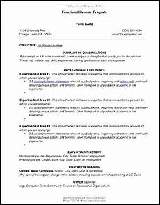 view sle functional resume free sles exles