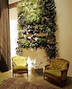 parete giardino giardino verticale interno 25 idee per pareti verdi in