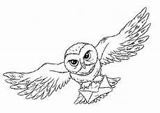 Eule Hedwig Malvorlage Harry Potter Malvorlage Eule Harry Potter Schablonen