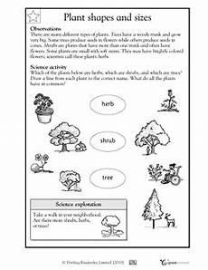 science worksheets for grade 1 types of plants 13715 1st grade 2nd grade kindergarten science worksheets plant shapes and sizes science