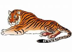 Kostenlose Malvorlagen Tiger Ausmalbilder Erwachsene Tiger