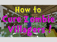 zombie villager save