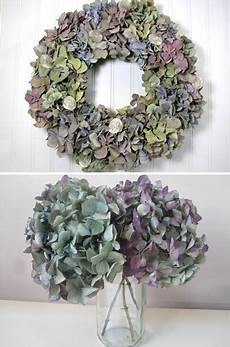 getrocknete hortensien dekorieren how to naturally hydrangeas hydrangea hydrangea not