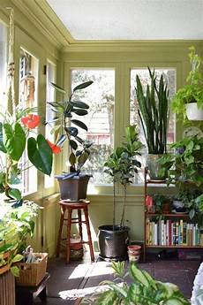 Living Room Home Decor Ideas With Plants by Sunroom Style Ideas To For Other Rooms In Your Home