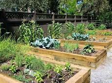 Desain Taman Sayuran Rumah Xy