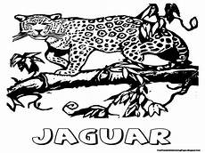jaguar coloring pages design