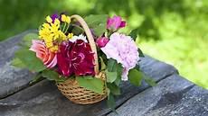 Quelles Fleurs Choisir Pour Quelqu Un Qu On Aime