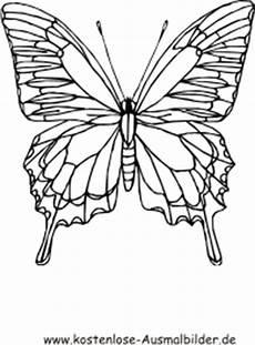 Malvorlagen Kostenlos Zum Ausdrucken Schmetterlinge Ausmalbilder Schmetterling Bunt Tiere Zum Ausmalen