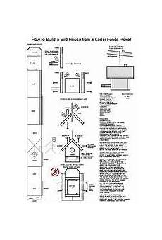 cedar bird house plans useful carolina wren birdhouse plans deasining