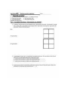 human genetics practice ws no 3 name period human genetics practice worksheet 3 1 explain the
