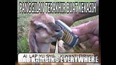 Meme Lucu Kambing Kurban Menjelang Hari Raya Idul Adha