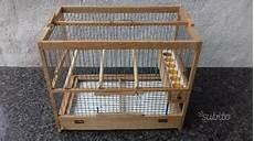 gabbie di legno per uccelli gabbia trappola per uccelli cardellini canarini posot class