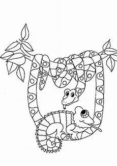 ausmalbilder schlangen 02 ausmalbilder tiere