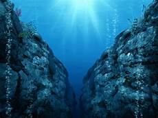 the mariana trench is 7 miles deep what s down there everyday einstein
