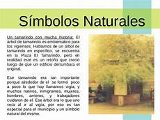 simbolos naturales que representan al estado guarico presentaci 243 n municipio alberto adriani