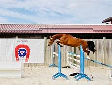 gamma jument sf 3 ans jument chevaux 224 vendre