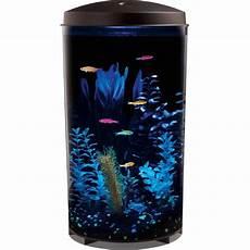 i think this is so cool walmart aquarius glofish 360 top mounted 6 gallon aquarium kit with led