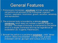 parasite cleansing,most effective parasite cleanse,parasite cleansing
