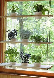 Kitchen Bay Window Plants by Hanging Plant Holder For A Window And Holds Lots