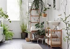fausse plante salle de bain indoor plants that won t meet their in your bathroom