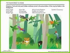 rainforest animals worksheets elementary 13860 animals in the rainforest worksheet education