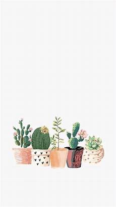 aesthetic cactus iphone wallpaper pin by jayde on screen saver plant wallpaper
